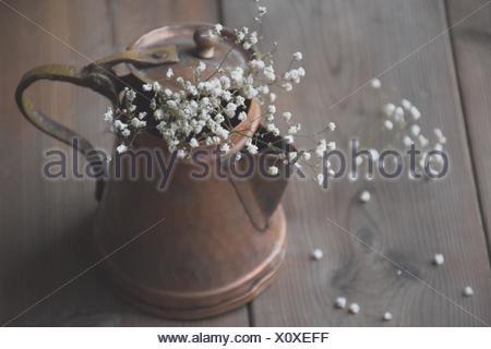 White Baby's Breath gypsophile (fleurs) dans un pot en cuivre Banque D'Images