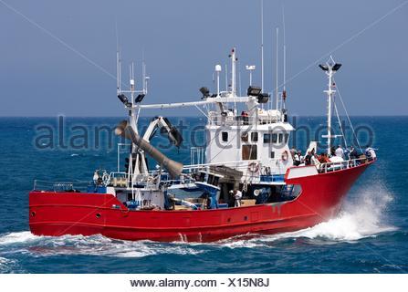 Bateau de pêche, Getaria, Gipuzkoa, Pays Basque, Espagne Banque D'Images