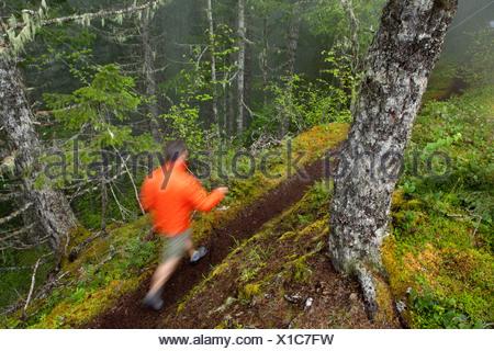 Un homme dans une veste orange randonnées à travers un sentier dans la forêt humide et brumeux. Banque D'Images