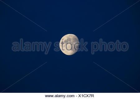Lune croissante dans le ciel, Allemagne Banque D'Images