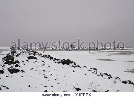 Sur les gens à la tombée de la jetée dans la neige Banque D'Images