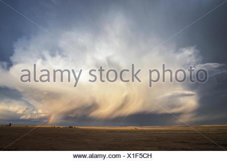 Tempête de nuages sur les champs, Colorado, États-Unis Banque D'Images