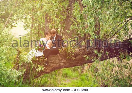 Bride and Groom sitting tombée en amour sur un arbre, Banque D'Images