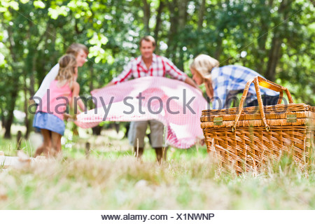 Family having picnic in park Banque D'Images