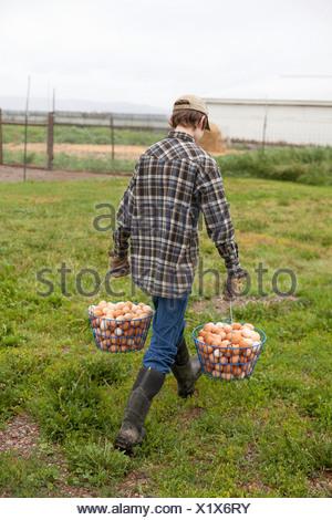 Garçon portant deux paniers d'oeufs
