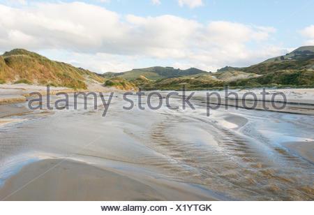 Phlébotome Bay, Dunedin, Otago Peninsula, Southland, Nouvelle-Zélande Banque D'Images
