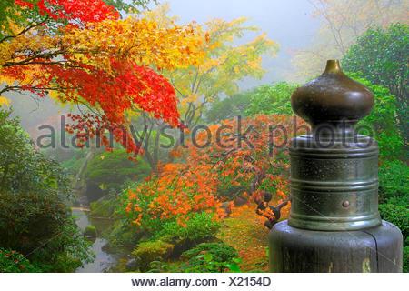 Pont de jardin en bois couleur japonais couleur automne automne macro macro close-up Banque D'Images