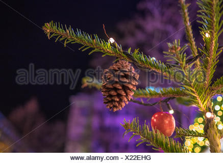 Portrait Of Pine Cone Hanging on Christmas Tree Banque D'Images