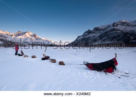 Des rangers du Parc national incombe à l'équipe son chien sur l'embranchement nord de la rivière Koyukuk au coucher du soleil, Brooks Range, Alaska Banque D'Images