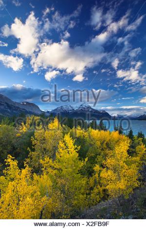 Abraham et Elliot Lake, Pointe des plaines de Kootenay, Alberta, Canada Banque D'Images