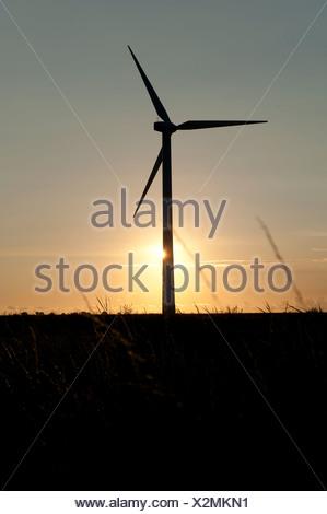 Silhouette d'une éolienne dans la campagne néerlandaise Banque D'Images
