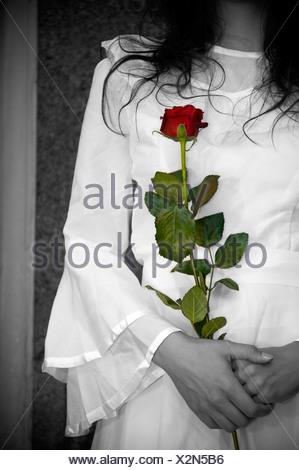 Une mariée vêtue de blanc tenant une rose rouge Banque D'Images