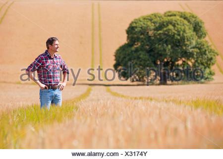Farmer standing in rural crop field orge ensoleillée Banque D'Images