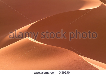 Dunes de sable de Khongoryn Gobi Gurvansaikhan, Parc National, la Mongolie Banque D'Images