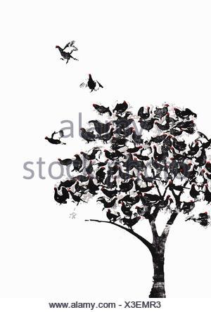 Nuée d'oiseaux perchés dans l'arbre Banque D'Images