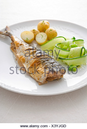 Le maquereau avec les concombres et les pommes de terre sur la plaque, close-up Banque D'Images