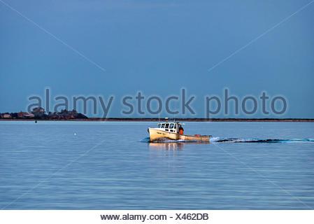 Bateau de pêche au homard revient de contrôler les pièges. Banque D'Images