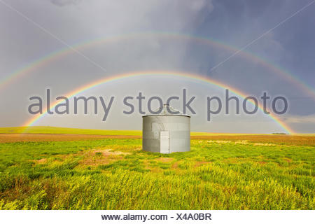 Un double arc-en-ciel est parfaitement centrée sur un silo à grains et champ de blé vert après un orage passe au Colorado. Banque D'Images