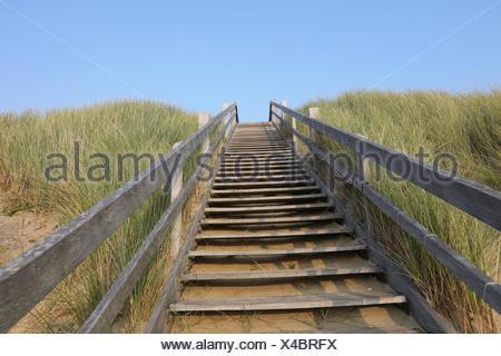 Escalier en bois Banque D'Images