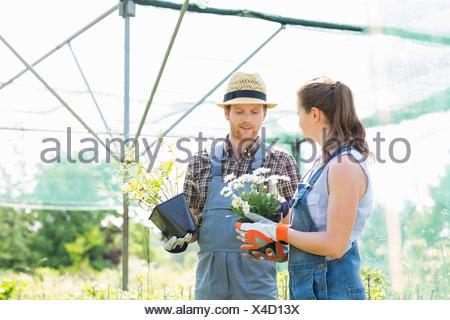 Jardiniers discuter sur les pots de fleurs à émissions de Banque D'Images