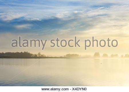 Lake Pfaeffikon dans humeur le matin, Suisse, Zuercher bernois Banque D'Images