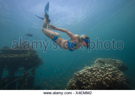 Femme de la plongée avec tuba et explorer un temple englouti et de récifs coralliens, Bali, Indonésie Banque D'Images