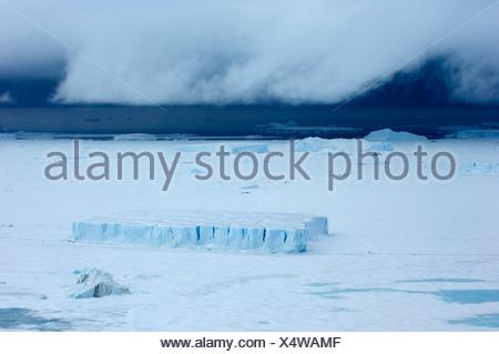Les icebergs coincé dans la banquise de la mer de Weddell gelé près de Snow Hill Island Antarctique Banque D'Images