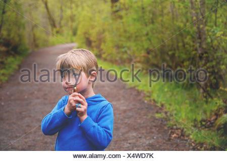 Boy (4-5) à la loupe à travers le sentier nature Banque D'Images