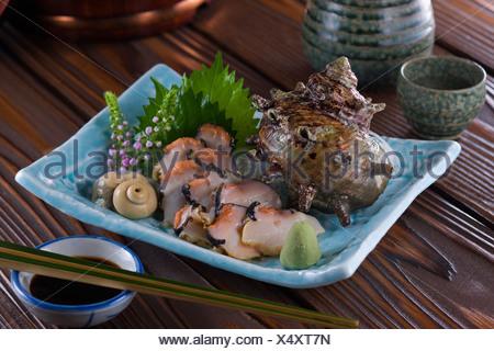 Sashimi de Sazae Banque D'Images