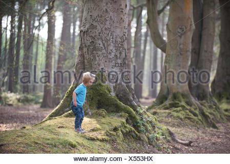 Garçon jouant dans la forêt Banque D'Images