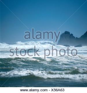 Surf Banque D'Images