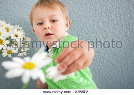 Bébé Garçon jouant avec des fleurs Banque D'Images
