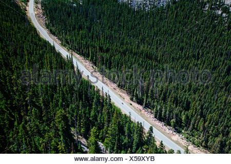 Une route traverse un parc national et le vert des arbres.