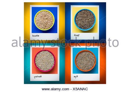 Aliments contenant du gluten( selt, blé, seigle, orge ). Banque D'Images