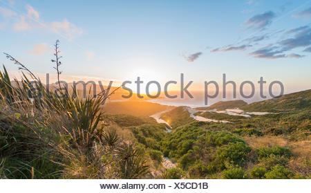 Coucher de soleil sur la mer, les dunes, la baie de phlébotome, Dunedin, Otago, péninsule d'Otago, Southland, Nouvelle-Zélande Banque D'Images