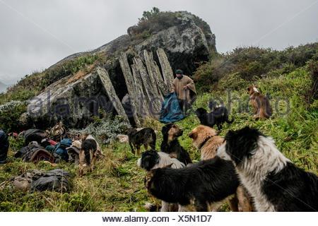 Gauchos trouver un vieux refuge sous un rocher pour passer la nuit sur le chemin de Sutherland, dans Peninsula Antonio Varas. Banque D'Images