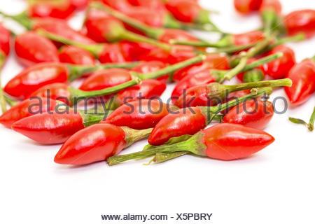 Tas de piments rouges mûres Piri-Piri Banque D'Images
