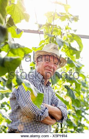 Senior man wearing hat entouré de plantes bras croisés looking at camera smiling Banque D'Images