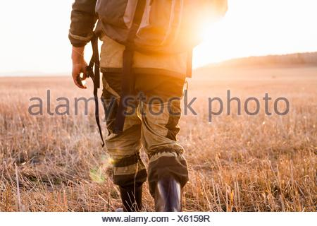 Mid adult man marche à travers champs, vue arrière, low section Banque D'Images