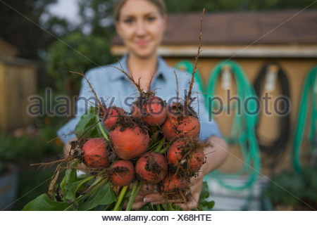 Woman showing freshly harvested beetroots in garden Banque D'Images