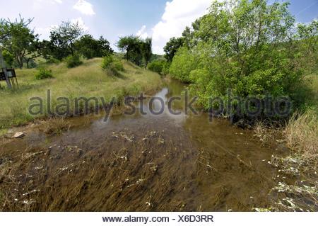 L'eau de percolation venant du réservoir pour l'irrigation à Ralegan Siddhi, près de Pune Maharashtra; Inde;