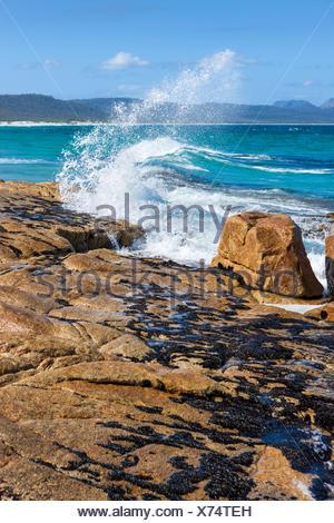 Plages, l'Australie, la Tasmanie, sur la côte est, dans la mer, côte, vagues, rochers, falaises,