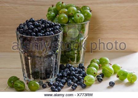Les bleuets et les groseilles en verre avec des petits fruits. épars