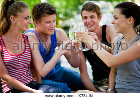 Italie, Toscane, Friends clinking champagne glasses at picnic Banque D'Images