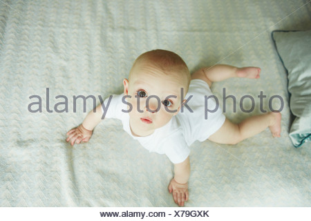 Baby Boy crawling on bed Banque D'Images
