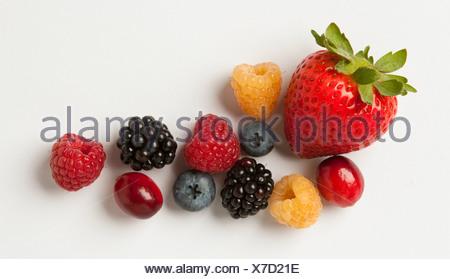Agriculture - mélange de petits fruits: fraises, framboises rouges et or, mûres, myrtilles, canneberges et sur blanc. Banque D'Images