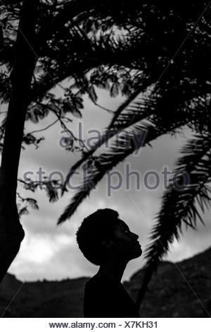 Silhouette de tête de la femme dans la nature Banque D'Images