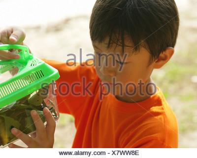 Portrait d'un jeune garçon à la recherche d'une cage à Banque D'Images