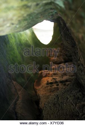 Voir le grotte. Banque D'Images