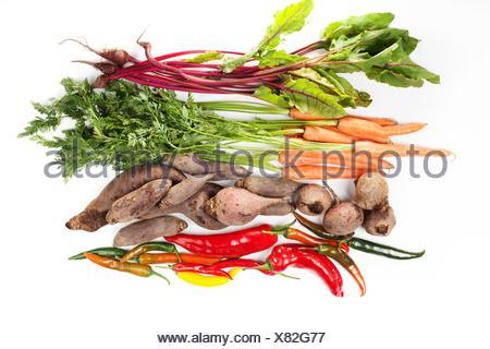 Bouquet de feuilles de betterave, carotte, betterave et de piment sur fond blanc Banque D'Images